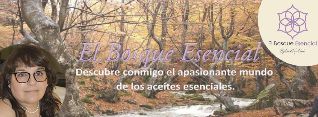 Bienvenidos al Bosque esencial