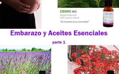 Mujer, Embarazo y Aceites Esenciales 1ª parte